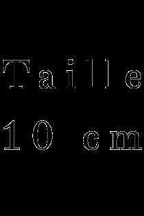 10 cm