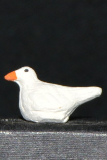 pigeon 6 cm
